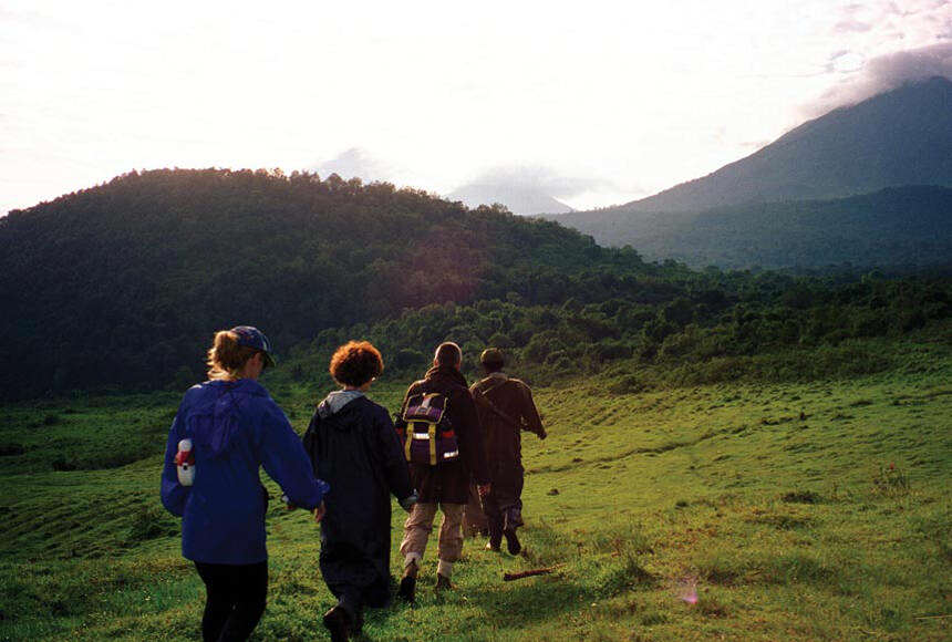 Malaria Gorilla Trekking