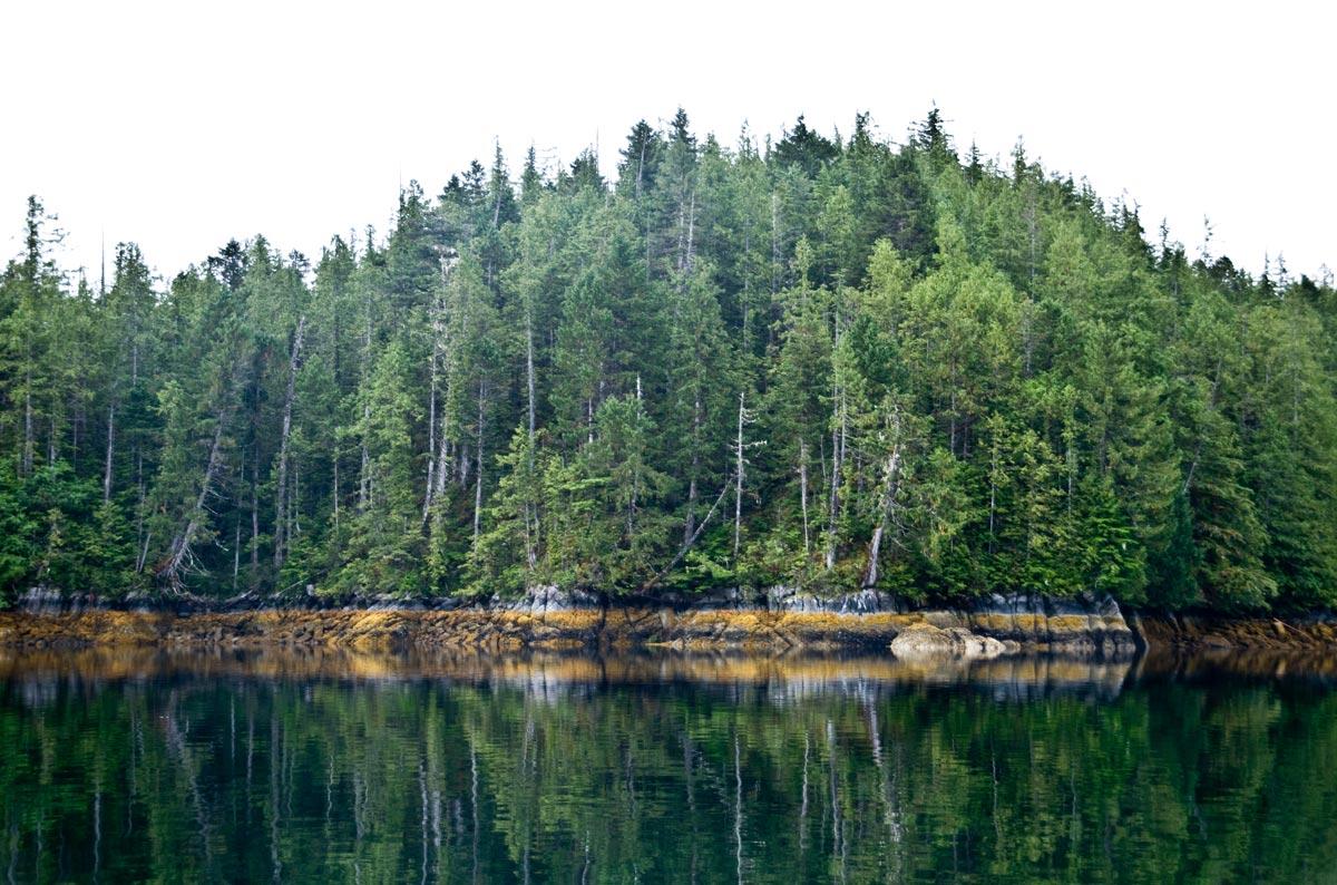 Roscoe Inlet