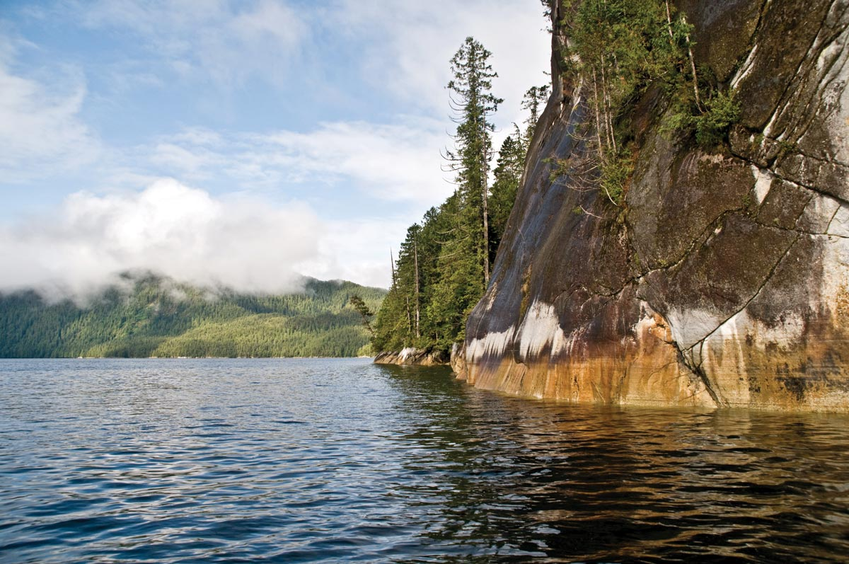 Great Bear Rainforest Travel