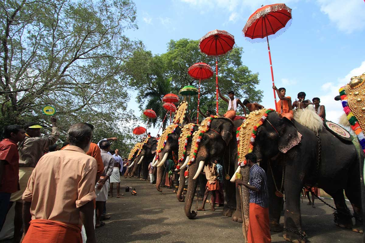 thrissur pooram festival travel guide