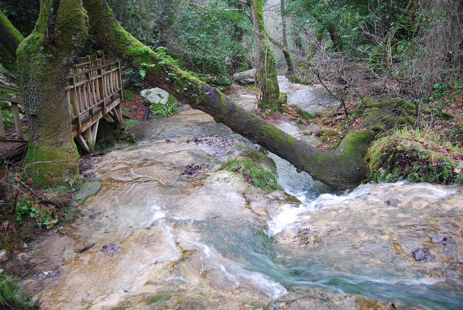 marmaris nature hikes
