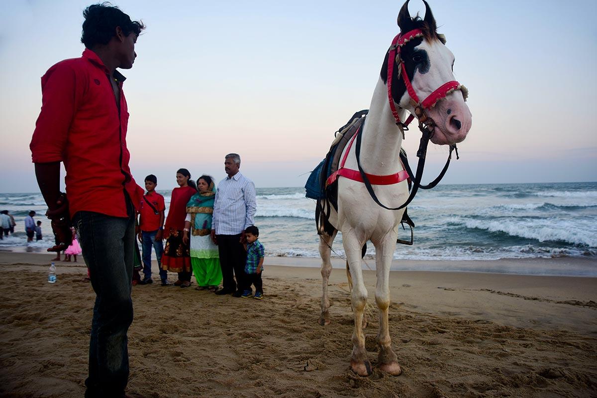mahabs horseback riding