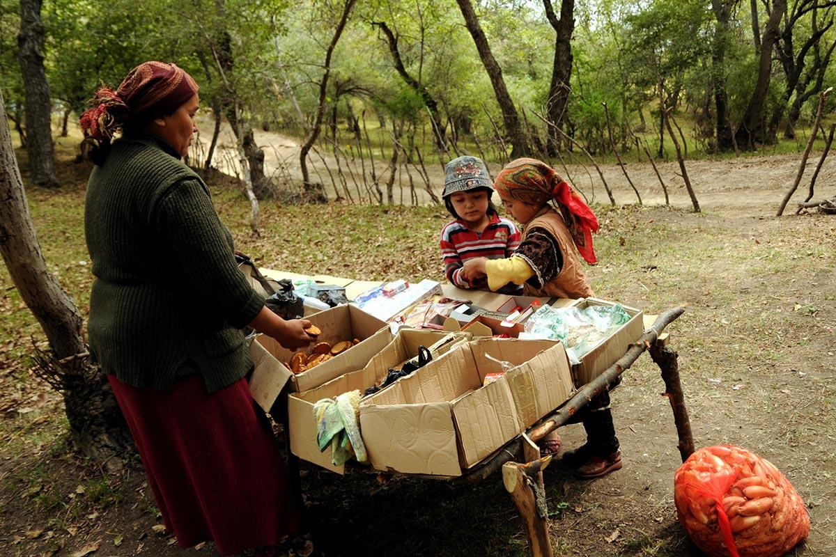 kyrgyzstan walnut forest