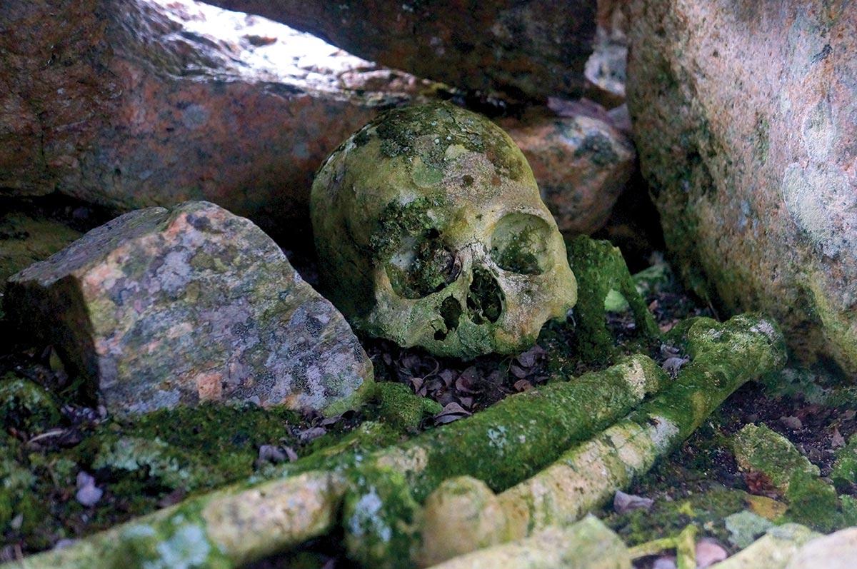 nunavut human remains