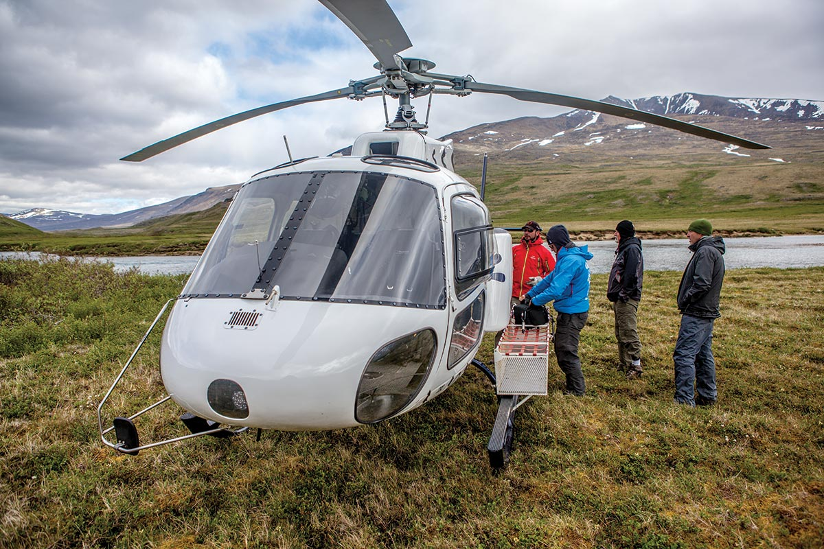 helicopter tours nunavik