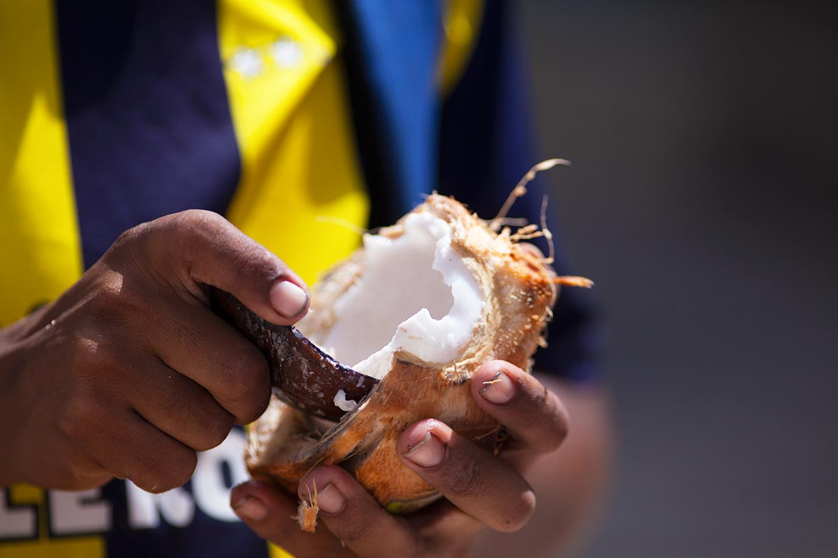 colombian coconuts