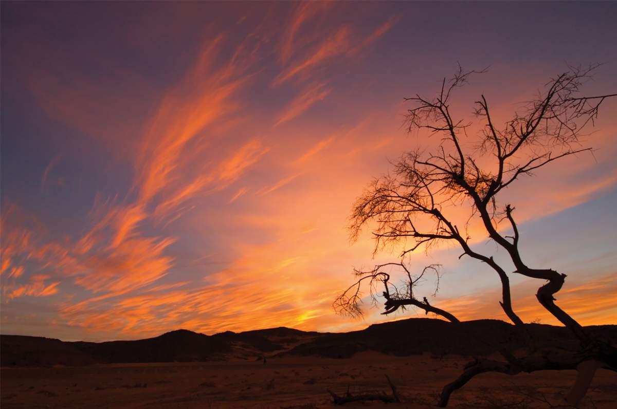 Sahara Desert, Sudan, Ryan Murdock