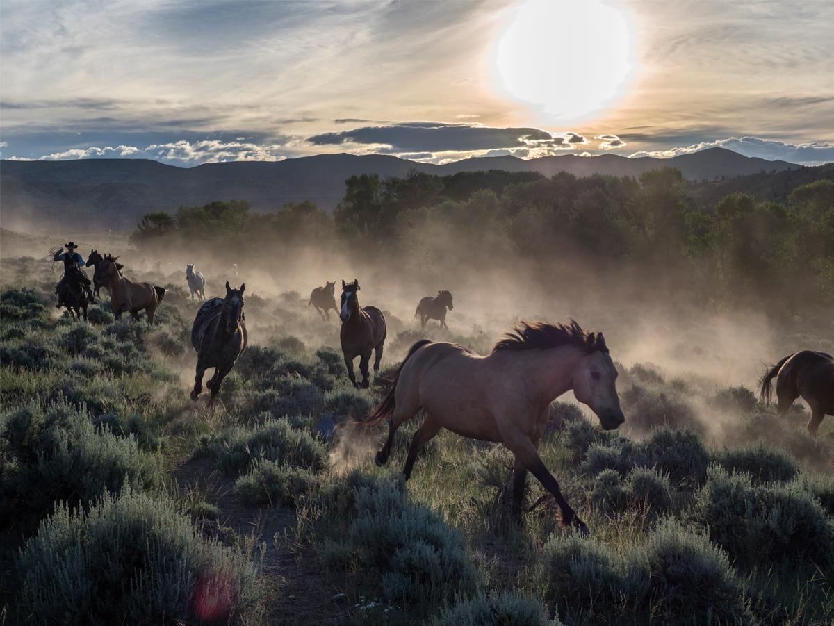 Jay Dickman: Photojournalist, Pultzer-Prize Winner