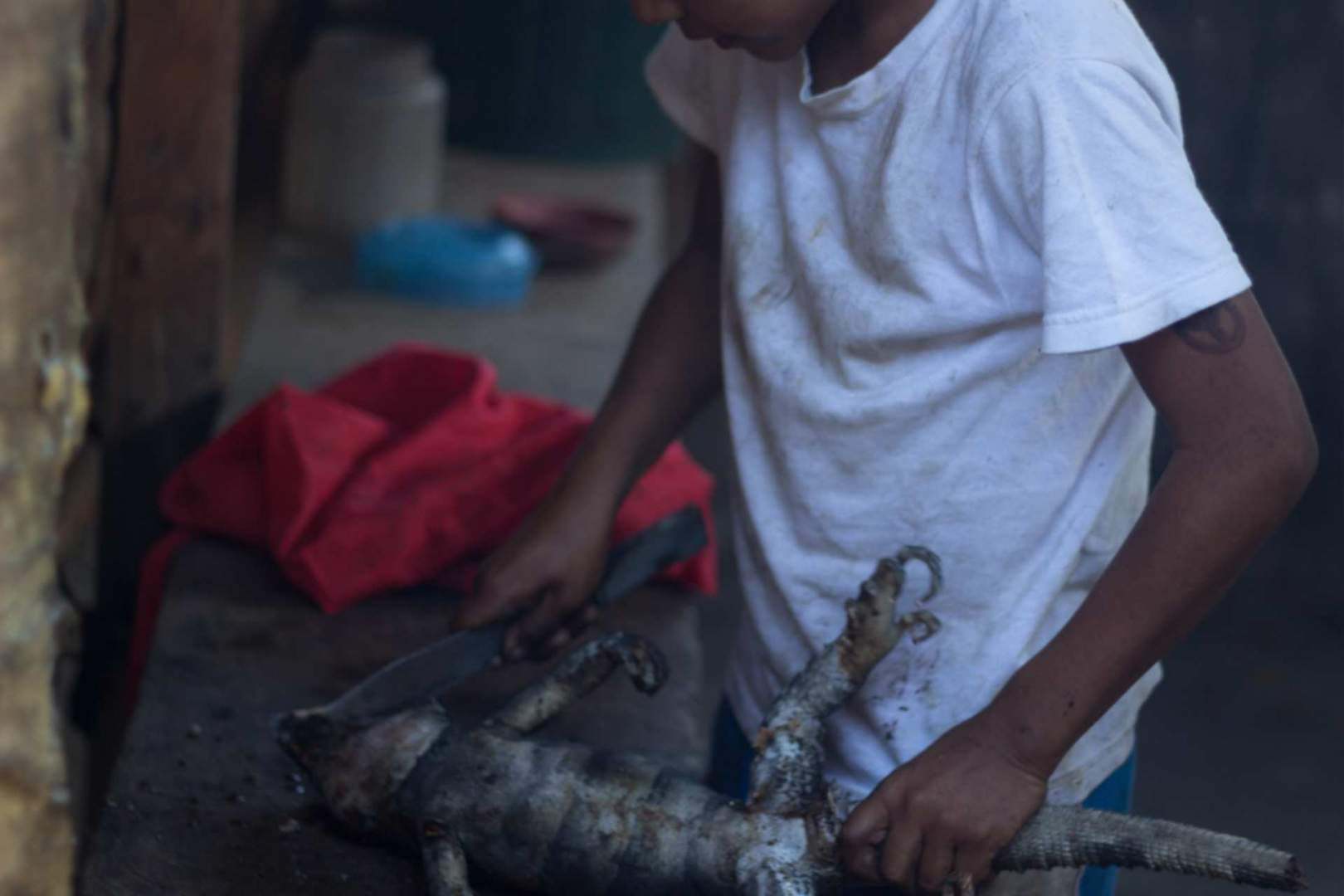 IMG_3668 Lena Desmond Iguana hunting Nicaragua
