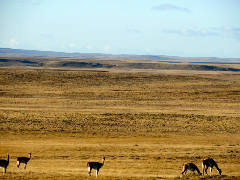 Sarah Tory, Patagonia, Andes Road, cycling trip, bike trip